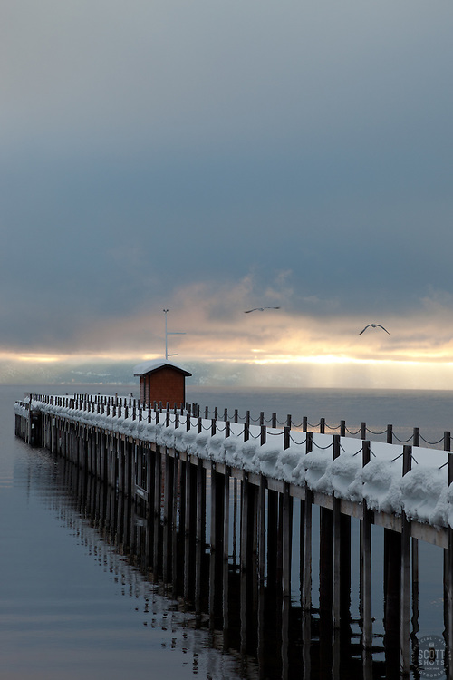 """Snowy Pier in Tahoe City 1""- This snow covered pier and two flying birds were photographed in the early morning near Commons Beach in Tahoe City, CA."