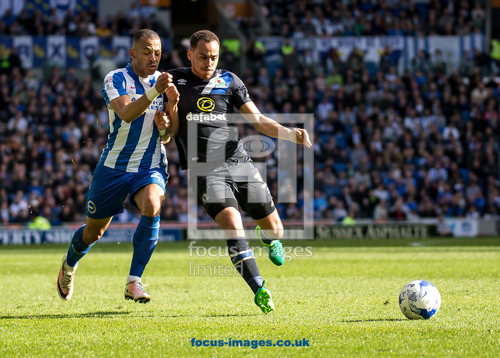 Elliott Bennett of Blackburn Rovers and Liam Rosenior of Brighton &amp; Hove Albion during the Sky Bet Championship match at the American Express Community Stadium, Brighton and Hove<br /> Picture by Liam McAvoy/Focus Images Ltd 07413 543156<br /> 01/04/2017