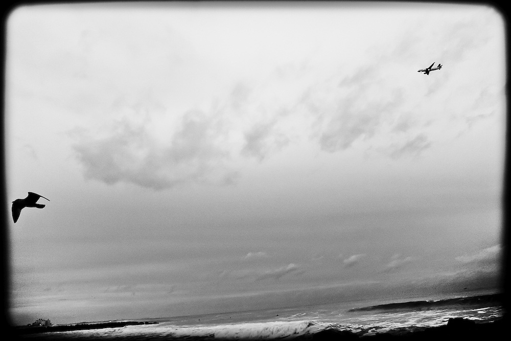 It's a bird AND a plane flying over the 91st surf break at Rockaway Beach, Queens, NY.