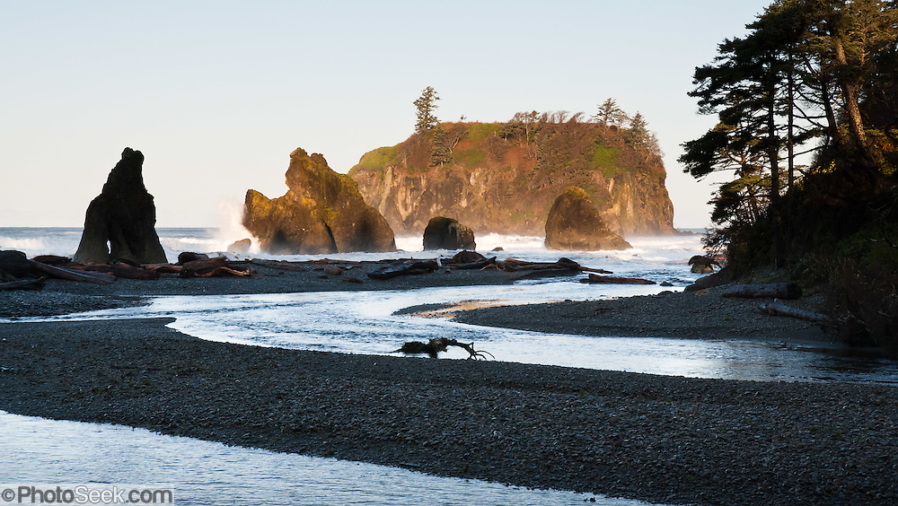 Cedar Creek, Abbey Island, sea stacks, surf, driftwood, coastal forest at Ruby Beach, Olympic National Park, Washington, USA
