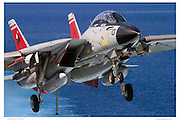 F-14D, VF31 Final Cruise