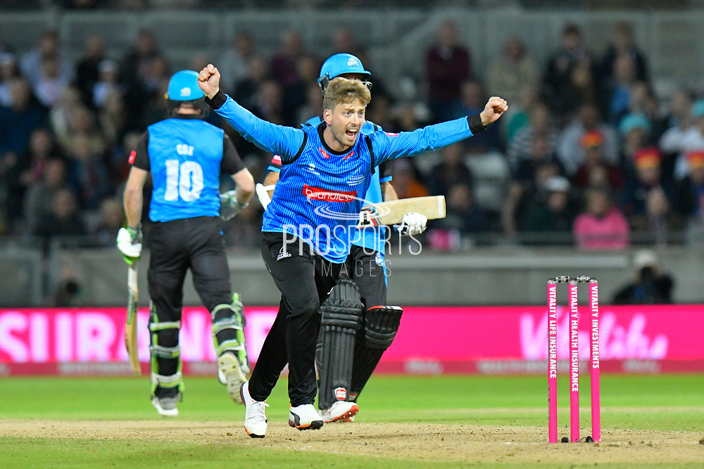 Wicket - Will Beer of Sussex celebrates taking the wicket of Moeen Ali of Worcestershire during the final of the Vitality T20 Finals Day 2018 match between Worcestershire Rapids and Sussex Sharks at Edgbaston, Birmingham, United Kingdom on 15 September 2018.