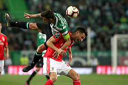 February 3, 2019 - Lisbon, Portugal - Sporting's midfielder Bruno Fernandes from Portugal (L) fights for the ball with Benfica's midfielder Andreas Samaris during the Portuguese League football match Sporting CP vs SL Benfica at Alvalade stadium in Lisbon, Portugal on February 3, 2019. (Credit Image: © Pedro Fiuza/NurPhoto via ZUMA Press)
