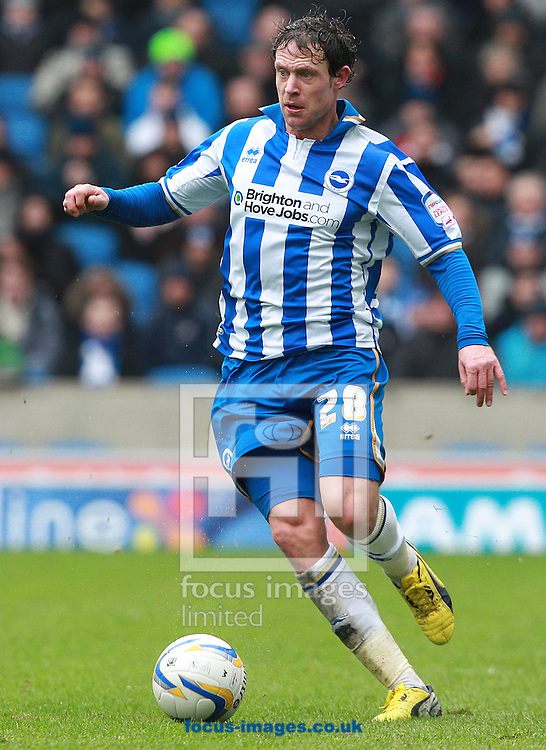 Picture by Paul Terry/Focus Images Ltd +44 7545 642257.17/03/2013.Wayne Bridge of Brighton and Hove Albion during the npower Championship match at the American Express Community Stadium, Brighton and Hove.