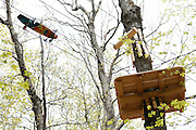 Bristol Mountain's new Aerial Adventure Park on Tuesday, May 20, 2014.