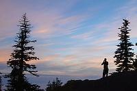 Sunrise Point. Hurricane Ridge, Olympic National Park, WA.