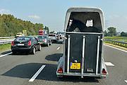 Nederland, A59, 15-9-2014 File op de snelweg vanwege wegwerkzaamheden. Een trailer met een paard erin. Paardentrailer, aanhanger.Foto: Flip Franssen/Hollandse Hoogte