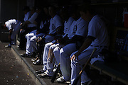 DETROIT, MI - JUNE 19: Detroit Tigers players watch from the dugout during the game against the Baltimore Orioles at Comerica Park on June 19, 2013 in Detroit, Michigan. Orioles won 13-3. (Photo by Joe Robbins)