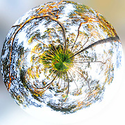 "Tiny planet made in ""bois de Villers"".<br />