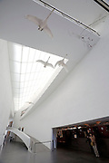 Kiasma Museum of Contemporary Art. Swans in the lobby.