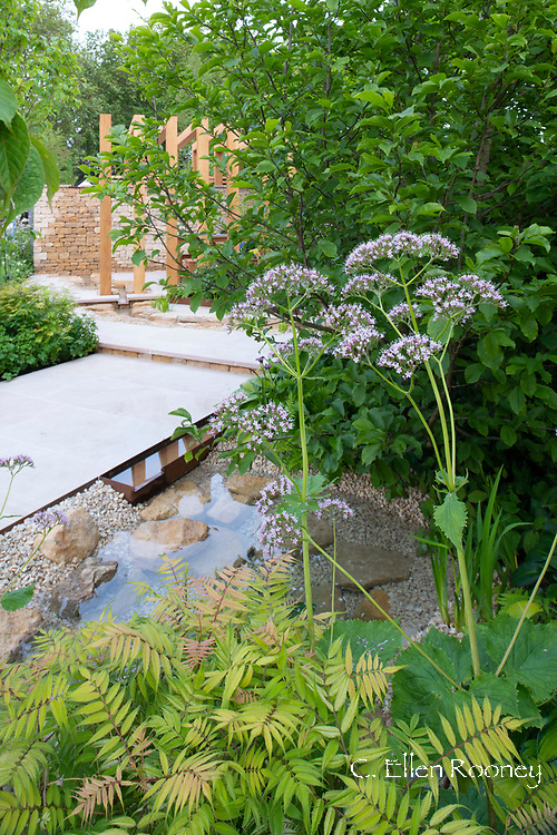the Kampo No Niwa Garden, a gold medal winner in the Space to Grow category at the RHS Chelsea Flower Show 2019, London, UK