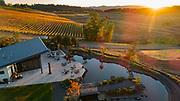 Aerial drone view of Golden fall hues at Saffron Fields Vineayrd, Yamhill-Carlton AVA, Willamette Valley, Oregon