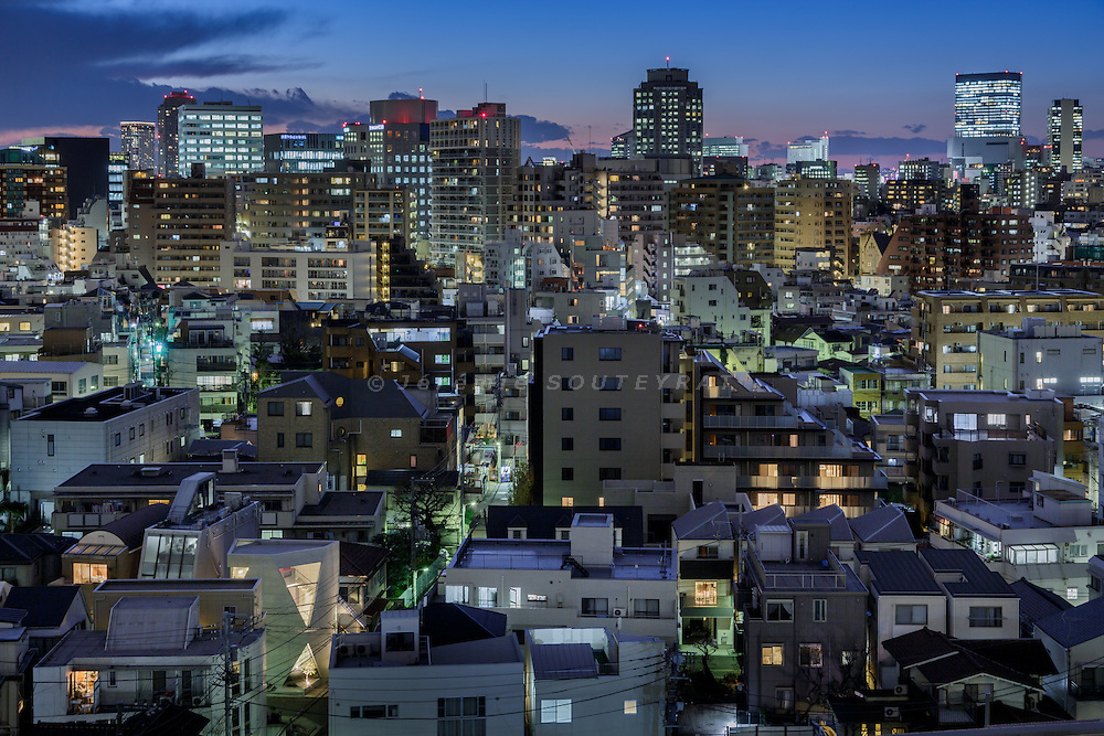 Tokyo, March 24 2015 - R-Torso-C House by Atelier Tekuto.