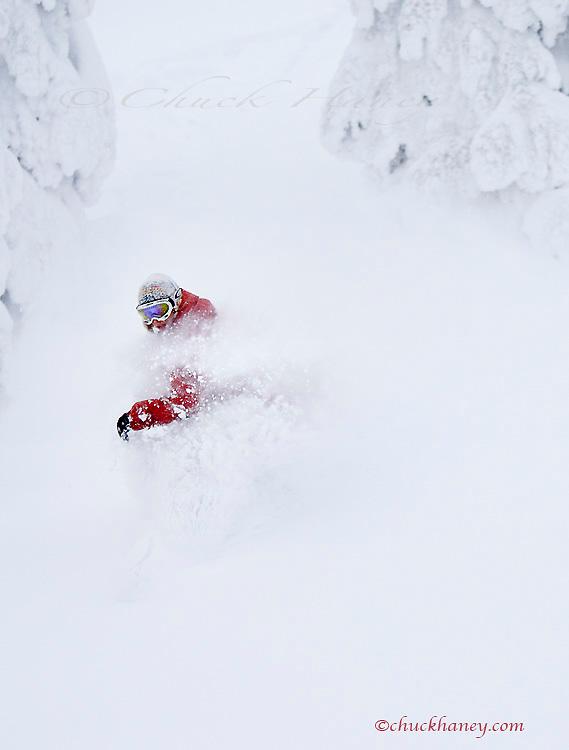 Snowboarding deep powder at Whitefish Mountain Resort in Montana model released