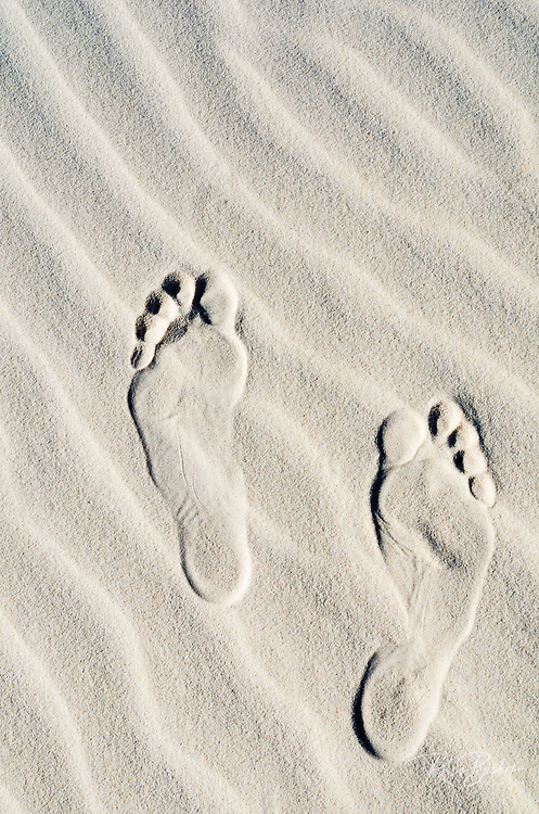 Footprints on dune patterns, White Sands National Monument, New Mexico USA