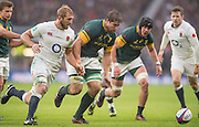 """Twickenham, United Kingdom.  """"Eyes on the ball, left Chris ROBSHAW and Willem ALBERTS, """"close in on the loose ball, during the  Old Mutual Wealth Series Match: England vs South Africa, at the RFU Stadium, Twickenham, England, Saturday, 12.11.2016<br /> <br /> [Mandatory Credit; Peter Spurrier/Intersport-images]"""