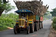 Transporting sugar cane. Tamil Nadu.