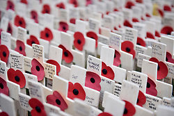 © Licensed to London News Pictures. 08/11/2017. London, UK.  Ceremonial crosses and poppies in the Field of Remembrance outside Westminster Abbey as preparations for Armistice Day and Remembrance Sunday begin in, and around, Westminster.  Photo credit: Stephen Chung/LNP