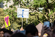 "20 September 2019 - New York, NY.  Thousands of students as well as adults gathered in New York for the Global Climate Strike, meeting in Foley Square near the Federal Government buildings and New York's City Hall, and marching downtown to Battery Park, where Swedish climate activist and spokesperson Greta Thunberg addressed the crowd. Two signs are visible, one reading ""We love you Greta you inspire us to act to stop the climate crisis. Thank you!"", and the other ""Make America Greta again!"""