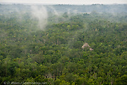 Mayan pyramid standing in midst of a steaming tropical wilderness as the sun evaporates rainwater from the jungle canopy, Coba, Mexico