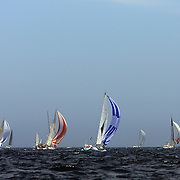 The fleet heads down the Eastern coastline of Australia after the start of the 64th Rolex Sydney to Hobart Yacht Race 2008 which began in the waters of Sydney Harbor. Exactly 100 yacht's entered in this years race with spectators on the Sydney Harbor foreshore estimated to have reached over 500,000 people on December 26, 2008. Maxi Wild Oats XI skippered by Mark Richards was looking to make history with a record fourth consecutive line honors victory.