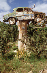 Old car balanced on top of tree trunk; with sign reading 'progress over nature',