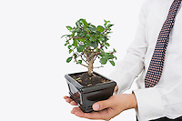 Midsection of businessman carrying potted plant over white background