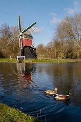 Oegstgeest, Zuid Holland, Netherlands