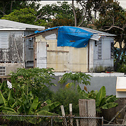 AUGUST 27, 2018--CATA&ntilde;O---PUERTO RICO--<br /> A house with blue tarps covering part of the roof  in the Barrio Palmas of Cata&ntilde;o. Throughout Puerto Rico blue tarps are a common sight almost one year after hurricane Maria's path.<br /> (Photo by Angel Valentin/Freelance)