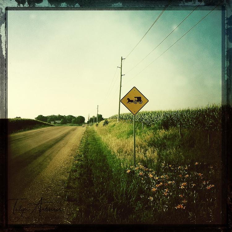 Amish crossing - Davenport, Iowa