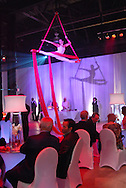 Aerial performer Sarah the Bobcat at the Audi Party for the NADA in New Orleans.