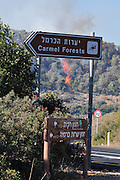 Carmel Forests Hotel. Huge forest fire rages on the Carmel Mountain South of Haifa Israel. International efforts to contain the fire have been going on for the last 3 days. December 4th 2010.