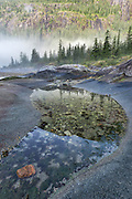 Pool in the intertidal zone of Fords Terror, a glacial fiord in Southeast Alaska.