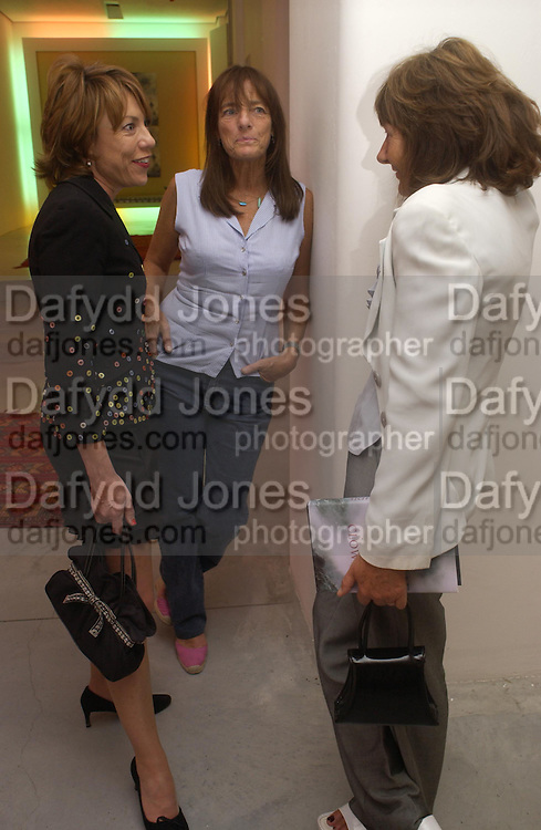 Kathy Lette,  Ruth Rogers and Melissa Chassay. Party to celebrate the publication of Shalimar the Clown by Salman Rushdie. David Gill Gallery, 3 Loghborough St. London SE11 ONE TIME USE ONLY - DO NOT ARCHIVE  © Copyright Photograph by Dafydd Jones 66 Stockwell Park Rd. London SW9 0DA Tel 020 7733 0108 www.dafjones.com