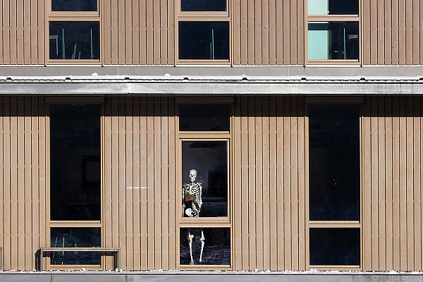 Nederland, Ubbergen, 8-12-2012Voor het raam van een middelbare school, havo, staat een menselijk skelet wat gebruikt wordt bij het vak biologie.Foto: Flip Franssen/Hollandse Hoogte