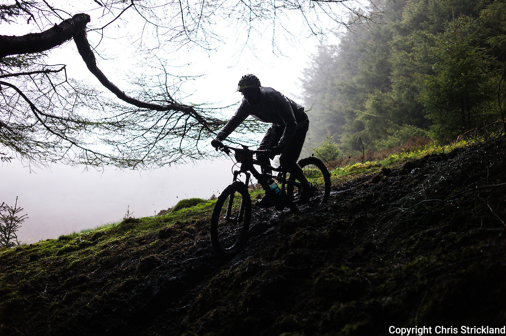 Glentress, Peebles, Scotland, UK. 31st May 2015. Daniel Prijkel in action on Stage 5 of The Enduro World Series Round 3 taking place on the iconic 7Stanes trails during Tweedlove Festival.