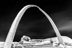 Black and white whale bones Utqiagvik Barrow Alaska with the Big Dipper in the middle
