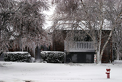 01 December 2006: Ice and snow cover the property and homes in Bloomington as a sharp winter storm swept into Central Illinois and the Bloomington-Normal area causing power outages, road closures, white out conditions, tree damage, and virtually every large business and schools to close.<br />