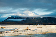 Clouds and mist enhance the sunrise on the Chilkat Mountains and Chilkat River bed near the Chilkat Bald Eagle Preserve near Haines in Southeast Alaska. Morning. Winter.