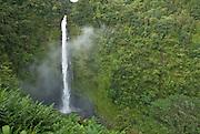 Akaka Falls near Hilo, Hawaii