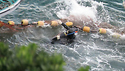 "EXCLUSIVE<br /> SHOCKING VIDEO show how one Dolphin tried hard to escape being taken captive<br /> <br /> This distressing video was shot in Taiji Japan, on January 21st, Day one of this super pod of dolphins captive selection.<br /> <br /> Captured by Liz Cater  she says: ""The dolphins were driven into the cove on January 19th and it is estimated to be anywhere between 250-300 dolphins trapped in the cove"" <br /> <br /> "" The pod had a lot of juvenile dolphins amongst it. this was day one and literally the first part of the pod to be selected, it was 5 minutes into selection when this occurred. The pod was panicked and they knew they had been separated from their family.""<br /> <br /> ""in one image of a dolphin you can see it vomiting, and to me this looks like his/her own intestines. This was not the only dolphin captured to be vomitting from the stress endured over 5 days""<br /> <br /> Liz went on to say while witnessing this very distressing moment ""The dolphins don't jump over the nets because they are foreign to them, they don't know whats on the other side, and being wild, have never encountered them before. Many do however get caught in them from the frenzy and, some can get over from such frenzy.""<br /> <br /> ""As you can see in this, one dolphin nearly got over but was grabbed and  wrangled back over into the selection area. This was quite a small dolphin to, a juvenile. The selection area is very shallow, i believe it is, because the men in most cases look like they are standing , they are not appearing to be treading water when they are stationary and looking for their next victim"" <br /> These shallow depths work against the dolphins, and makes it easier for the divers to grab them under water . <br /> <br /> The 100 dolphins taken have all now been transferred to small over crowded sea pens where their spirit will now be broken. The will starve them more for a few days, then being the process of feeding the dolphin dead drugged fish.<br /> ""shoving pills into the fish prior to feeding dolphins in the sea pen , as well as taking blood from unwell dolphi"