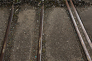 'Untitled, 2014' from the project 'The Fall and Rise of Ravenscraig' by photographer Colin McPherson.<br /> <br /> The photograph shows a disused railway tracks on the site of the former steelworks at Ravenscraig.<br /> <br /> This project, photographed in 2014, looks at the topography of the post-industrial landscape at Ravenscraig, the site until its closure in 1992 of the largest hot strip steel mill in western Europe. In its current state, Ravenscraig is one of the largest derelict sites in Europe measuring over 1,125 acres (4.55 km2) in size, an area equivalent to 700 football pitches or twice the size of Monaco. It is currently being developed with a mix of housing, retail and the home of South Lanarkshire College and the Ravenscraig Regional Sports Facility.