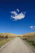 An empty one-lane dirt road leads toward a bright blue sky with small white clouds. Missoula Photographer, Missoula Photographers, Montana Pictures, Montana Photos, Photos of Montana