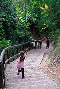 Child marching down steps leading into forest, Krka National Park, Croatia