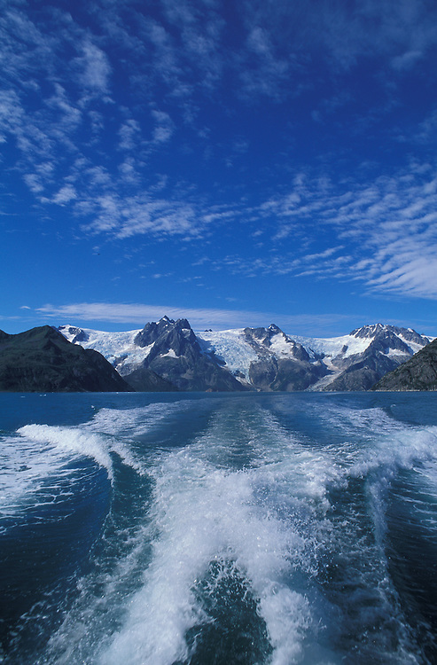 Kenai Fjords, Pribilof Islands, Alaska, USA