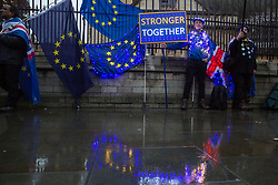 London, UK. 30 January, 2020. A pro-EU activist from SODEM (Stand of Defiance European Movement) stands draped in fairy lights at a party outside Parliament on the eve of Brexit Day on the theme of 'Party like there's no tomorrow'.