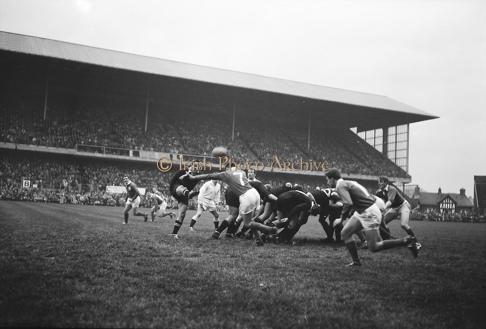 K C Briscoe kicks over the head of NA Murphy, number 7 of Ireland, into touch,..Irish Rugby Football Union, Ireland v New Zealand, Tour Match, Landsdowne Road, Dublin, Ireland, Saturday 7th December, 1963,.7.12.1963, 12.7.1963,..Referee- H Keenen, Rugby Football Union, ..Score- Ireland 5 - 6 New Zealand, ..Irish Team, ..T J Kiernan, Wearing number 15 Irish jersey, Full Back, Cork Constitution Rugby Football Club, Cork, Ireland,..J Fortune, Wearing number 14 Irish jersey, Right Wing, Clontarf Rugby Football Club, Dublin, Ireland,..P J Casey, Wearing number 13 Irish jersey, Right Centre, University College Dublin Rugby Football Club, Dublin, Ireland, ..J C Walsh,  Wearing number 12 Irish jersey, Left Centre, University college Cork Football Club, Cork, Ireland,..A T A Duggan, Wearing number 11 Irish jersey, Left Wing, Landsdowne Rugby Football Club, Dublin, Ireland,..M A English, Wearing number 10 Irish jersey, Stand Off, Landsdowne Rugby Football Club, Dublin, Ireland, ..J C Kelly, Wearing number 9 Irish jersey, Captain of the Irish team, Scrum Half, University College Dublin Rugby Football Club, Dublin, Ireland,..P J Dwyer, Wearing number 1 Irish jersey, Forward, University College Dublin Rugby Football Club, Dublin, Ireland, ..A R Dawson, Wearing number 2 Irish jersey, Forward, Wanderers Rugby Football Club, Dublin, Ireland, ..R J McLoughlin, Wearing number 3 Irish jersey, Forward, Gosforth Rugby Football Club, Newcastle, England, ..W J McBride, Wearing number 4 Irish jersey, Forward, Ballymena Rugby Football Club, Antrim, Northern Ireland,..W A Mulcahy, Wearing number 5 Irish jersey, Forward, Bective Rangers Rugby Football Club, Dublin, Ireland,  ..E P McGuire, Wearing number 6 Irish jersey, Forward, University college Galway Football Club, Galway, Ireland,  ..P J A O' Sullivan, Wearing  Number 8 Irish jersey, Forward, Galwegians Rugby Football Club, Galway, Ireland,..N A Murphy, Wearing number 7 Irish jersey, Forward, Cork Constitution Rugby Football Club, Cork,