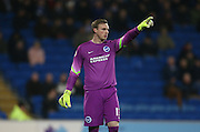 David Stockdale, Brighton goal keeper during the Sky Bet Championship match between Cardiff City and Brighton and Hove Albion at the Cardiff City Stadium, Cardiff, Wales on 10 February 2015.
