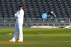 Time to relax for one couple in the spectator stands - Photo mandatory by-line: Rogan Thomson/JMP - 07966 386802 - 26/04/2015 - SPORT - CRICKET - Bristol, England - Bristol County Ground - Gloucestershire v Derbyshire — Day 1 - LV= County Championship Division Two.