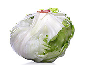 Studio shot of cabbage on white background